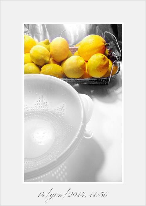 limoni interi