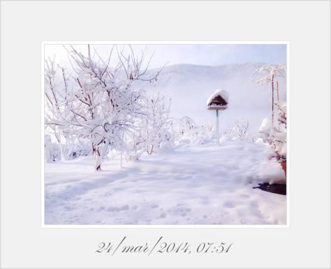 neve del 24 marzo 2014
