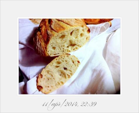 Reinhart San Francisco Sourdough Bread Crumb