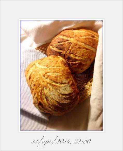 Reinhart San Francisco Sourdough Bread