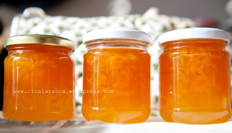 marmellata di mandarini da Christine Ferber Le Larousse des confitures