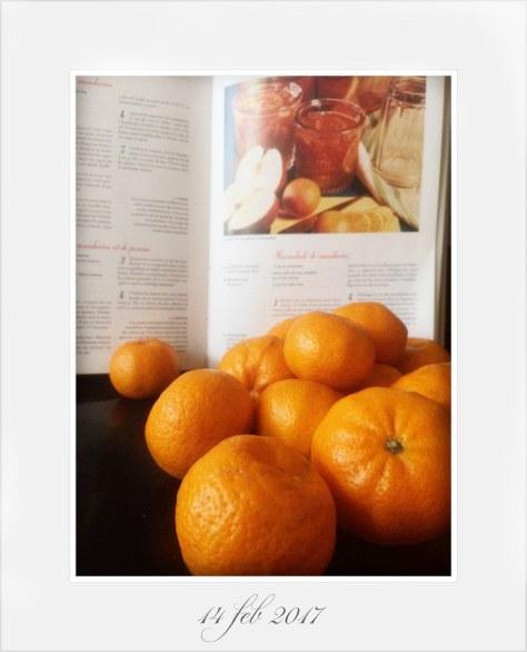 Marmellata di Mandarini, Christine Ferber: Le Larousse des Confitures